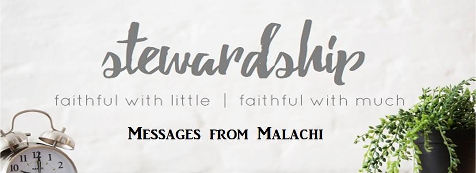 stewardship-series
